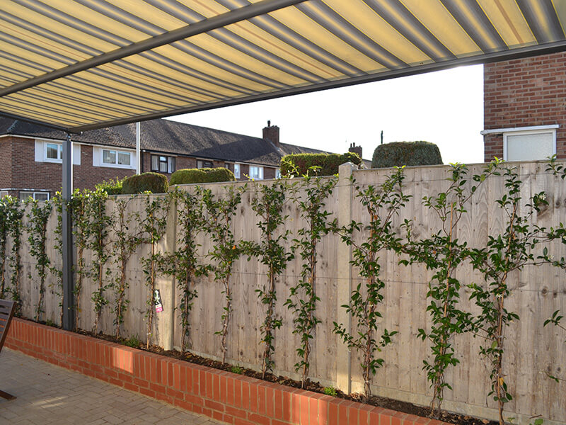 awning over garden fence